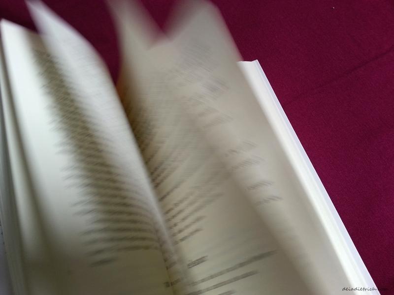 deiadietrich-livro-eleanor-e-park8