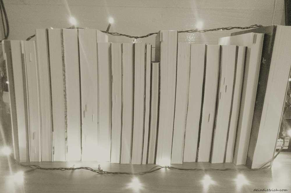 deiadietrich-7x7-livros3