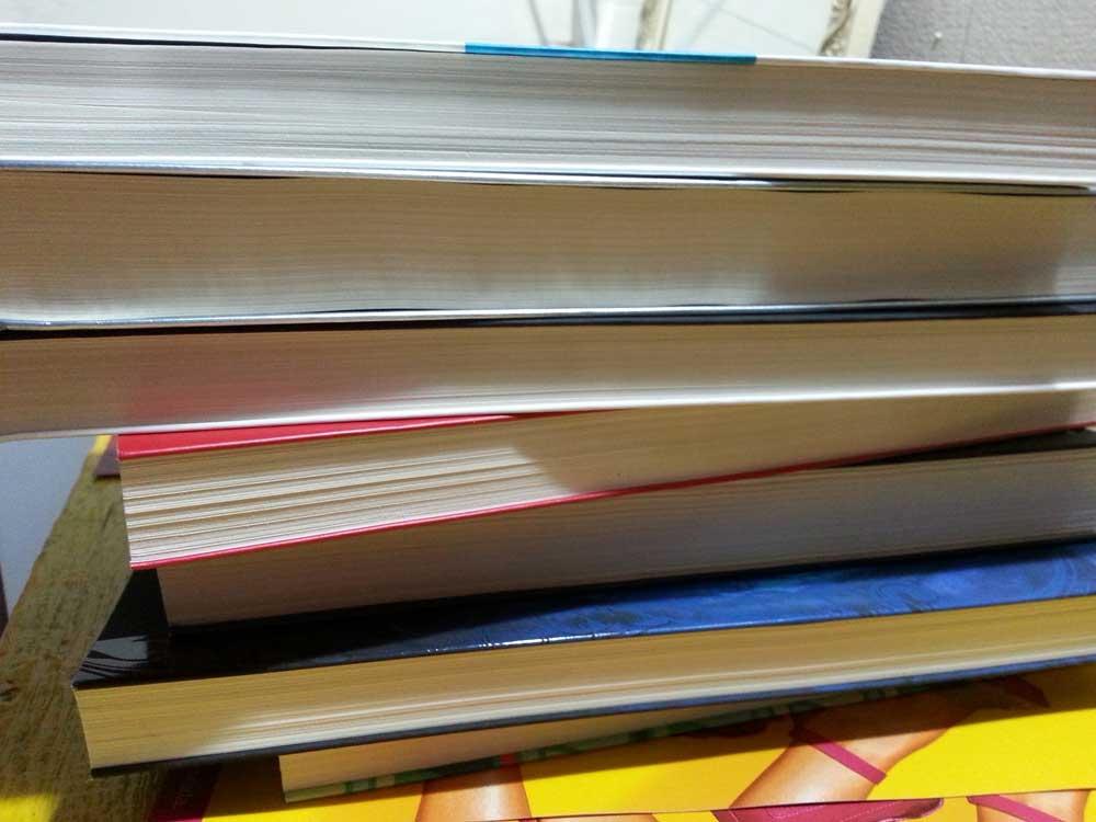 deiadietrich-7x7-livros5