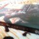 DEIADIETRICH.COM-livro-saga-encantadas-feitico